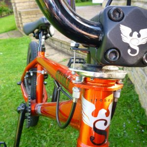 close up Front shot Stolen logo